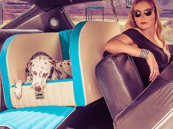 dogstyler-ruecksitzbank-auto-hundebett-series55a_classic-portal