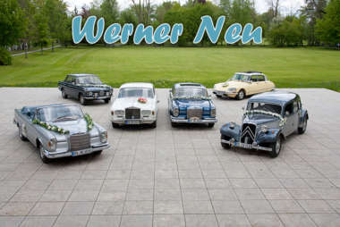 werner-neu-vermietung_teaser-logo