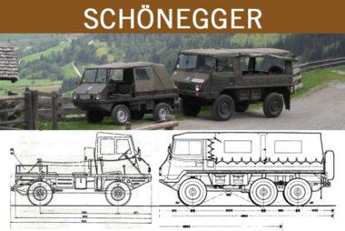schoenegger-pinzgauer-haflinger_classic-portal_gallery-teaser1