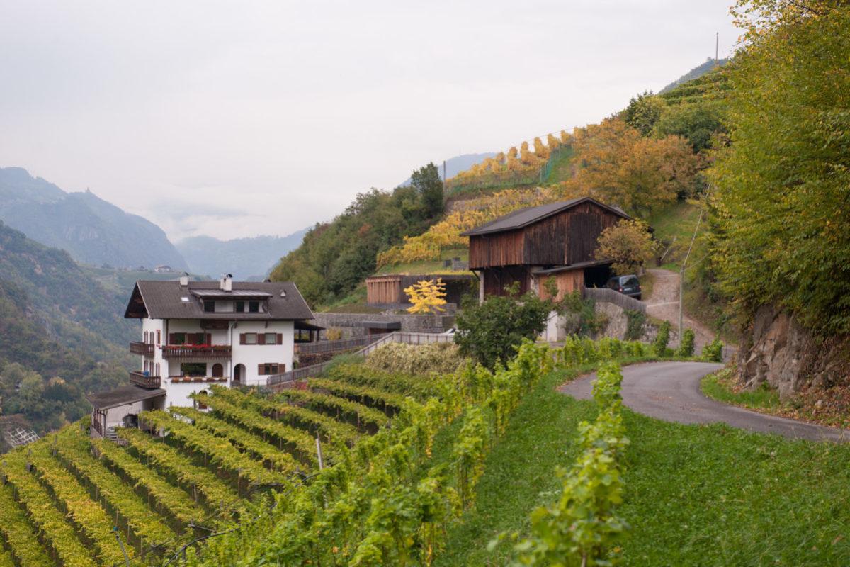 plantitscherhof-oldtimer-hotel-meran-suedtirol_classic-portal_410